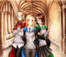 Hogwarts. We went there. by RoCkBaT