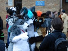 LondonFurs Fursuit Walk 18/01/2014 7 by ggeudraco
