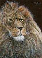 Lion (painting) by railrunnermiranda