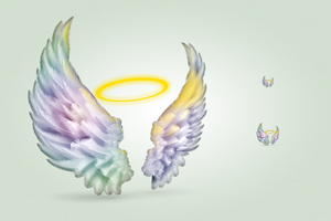 Wings icon by hbielen