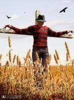 Freddy krueger by ourlak