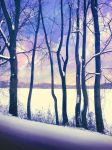 Snow .10 by asetix