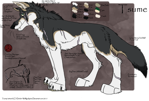 .: Tsume Ref Sheet :. by Dunkin-Prime