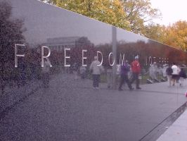 Freedom Is Not Free by littlerascal