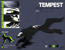 Character Sheet- Tempest by DarkHunter666