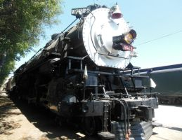 Southern Pacific ALCO 4-10-2 No. 5021 by rlkitterman