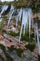 icicles by miliana63
