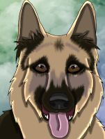 German Shepard by SassyHeart
