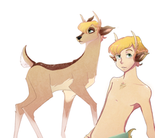 Deer by Naomi-shan
