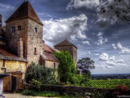 Burgundy Vineyard by digitalminded
