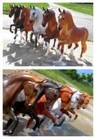Breyer - Salinero Line Up by The-Toy-Chest