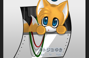 :-+The Stowaway Tails Chao +-: by kawaii-kitsune