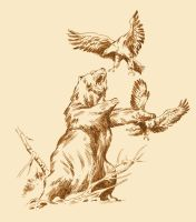 BEAR AND EAGLES by benitogallego