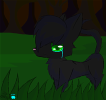 Hollyleaf... by P00NIS-IS-LOVE