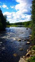 Finnish nature by homppa