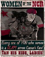 NCR Poster by FalloutPosters