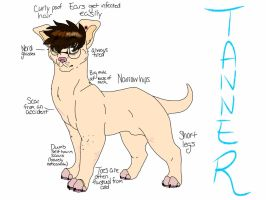tanner in the nude by AgentAnarchy