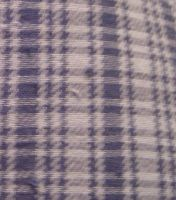 Fabric Texture 1-Blue Flannel by ErrantDreams
