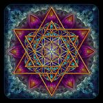 Flower of Life Fractal Star of David by Lilyas
