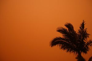 Dust Storm by infl3xion
