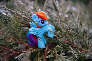 My little pony: Autumn by Uligma