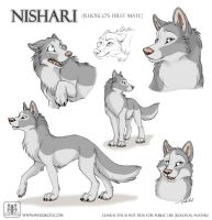 Sketches Nishari by TaniDaReal