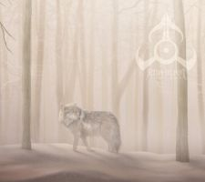 Journey of the Wolf Closeup by jocarra