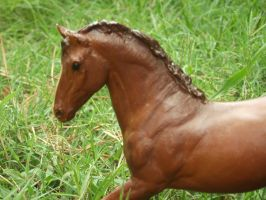 Breyer That Is No Longer Sold In Stores by BreyerPhotographer