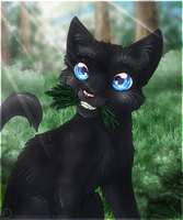 Cinderpelt by ThorinFrostclaw