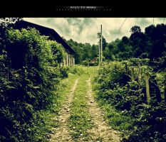 Road to Home by proama