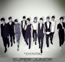 they are super Junior by SujuSaranghae