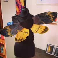 Bee Tiger Hawk Moth (preview) by Raiid