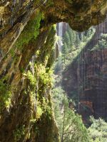 Zion's Weeping Rock by papatheo