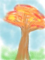 SKETCH A TREE by Bookworm247