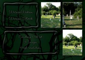 Cemetary open set by Wicasa-stock