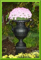 Pink Explosion In An Urn by Aswang301