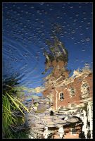 Plant Hall Reflection and Bubble by tyt2000