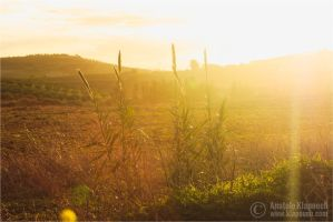 Alba in Campagna II by klapouch