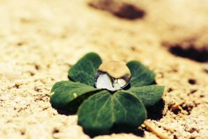 Luck of the Irish. by WalterGeee
