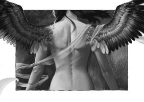 Wings Black and White by Blaetterwind
