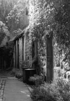 Alleyway - High College Bounds by noelholland