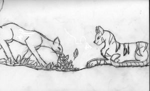 Whitewing And Birchfall by Leopardclaw07