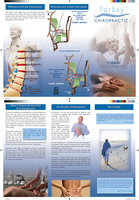 Torbay Chiropractic by rbryant