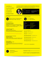 Self Promotion: Resume (preview) by xandra14