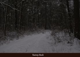 Winter drive- stock-1 by Rainny-Stock