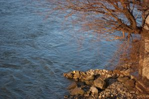 danube river by as--time--goes--by
