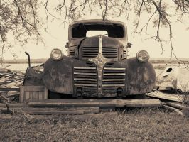Old Dodge by pissants