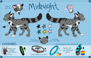 Midnight Reference 2012 by MidnightAlleyCat