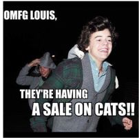 Harry Styles and Cats by 1Dluverrr2708