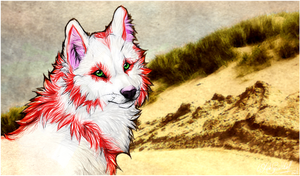 KP.:Don't Stay:. by WhiteSpiritWolf
